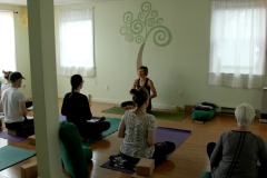 Group Yoga-Meditation
